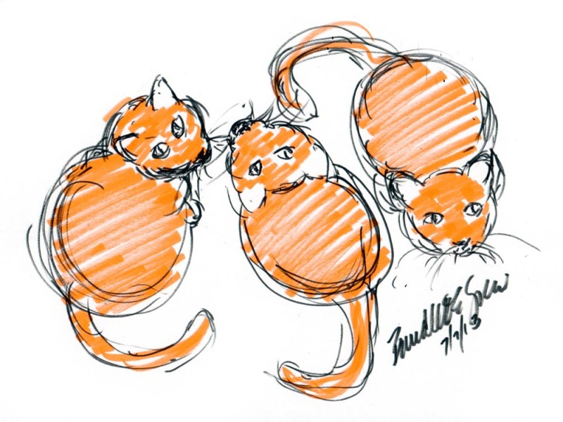 marker sketch of three cats
