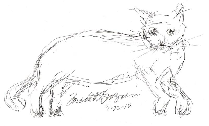 ink sketch of cat on floor