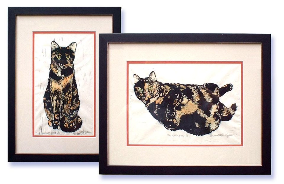 The Tortie Girls set.