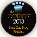 Petties-Cat_Blog (2)
