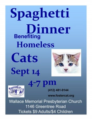 Microsoft PowerPoint - 2013 Spaghetti Dinner Flyer [Read-Only] [