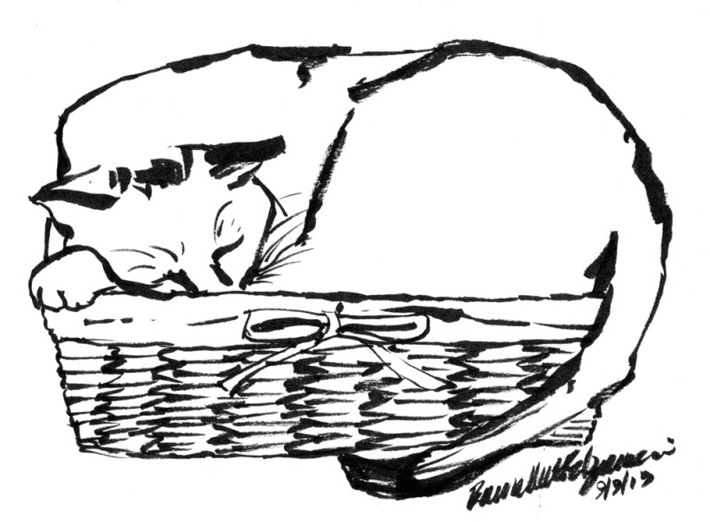brush pen draking of cat in basket