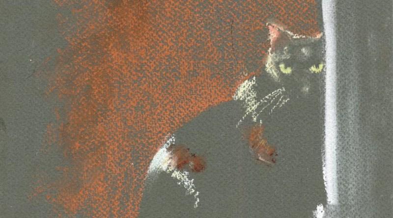 pastel sketch of cat on dark paper