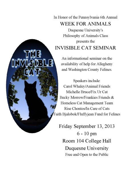 the invisible cat seminar pittsburgh