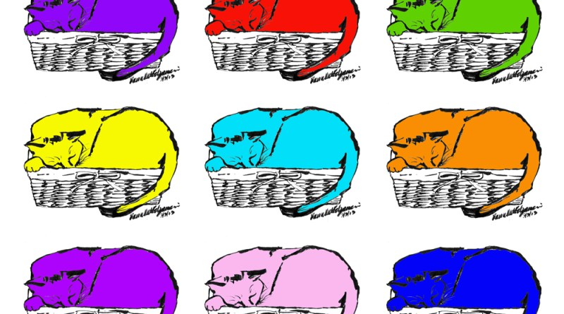 pattern of cat in basket with colors