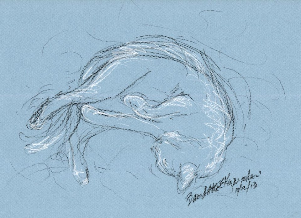"""Rolling Around"", black pastel pencil and white charcoal pencil on blue Canson paper, 10.5"" x 7.5"" © Bernadette E. Kazmarski"