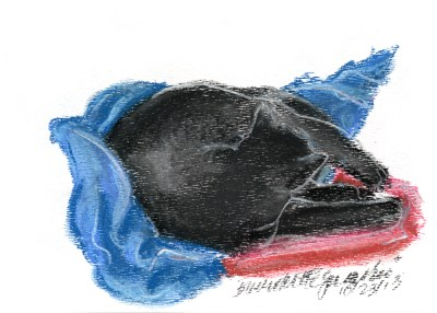 pastel sketch of black cat on red and blue blankets
