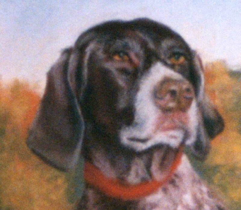 detail of pastel portrait of portrait of german short-haired pointer dog