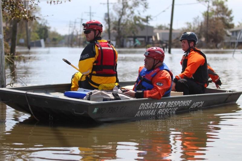 ASPCA Hurricane Ida Search and Rescue Efforts