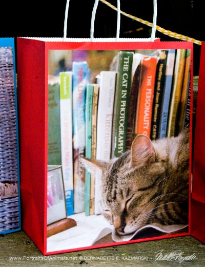 Dickie the Library Cat gift bag.