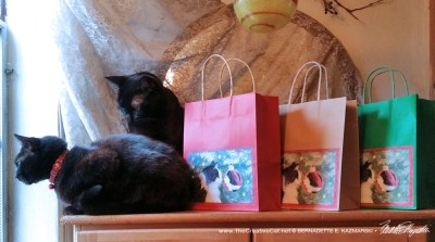 Holiday Gift Bags from Portraits of Animals!