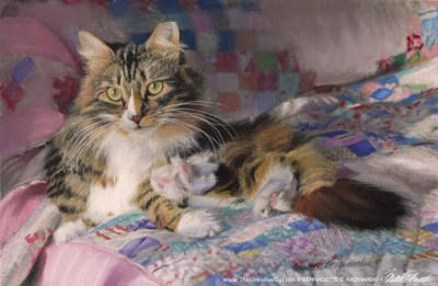 pastel painting of cat on quilt on bed