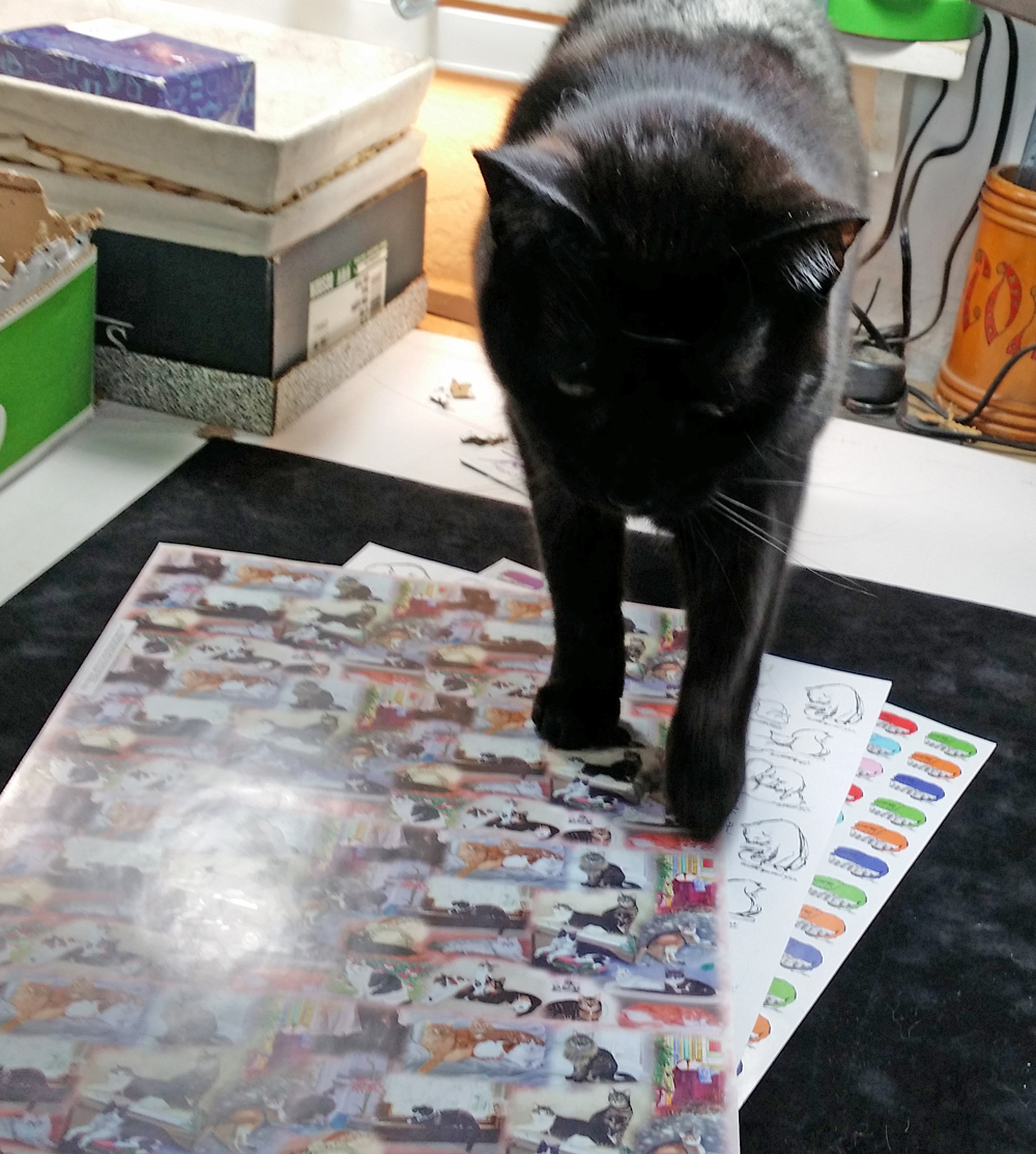 black cat walkding on art papers