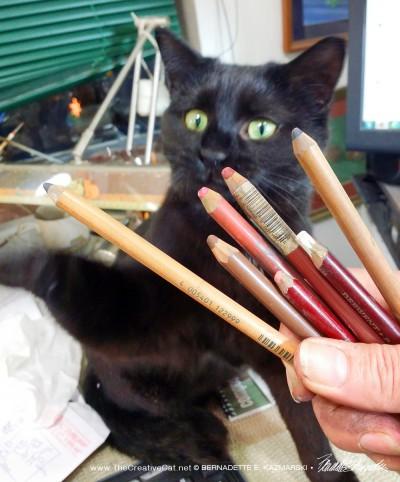 Which pencil should I choose, Bella?