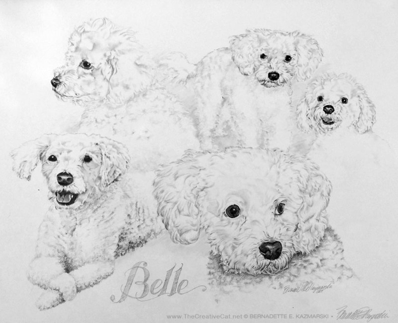 """Belle"", pencil on illustration board, 22″ x 28″, 2001 © Bernadette E. Kazmarski"