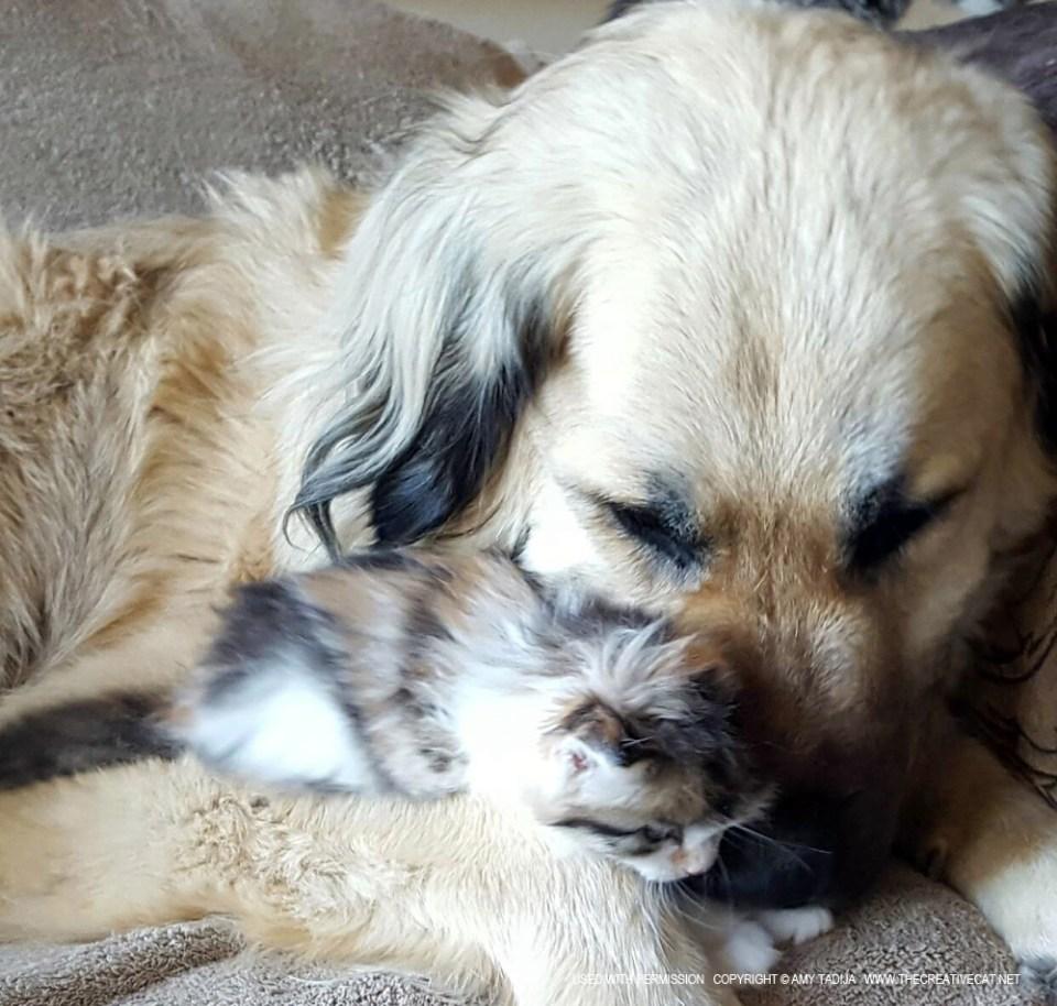 Snuggles.