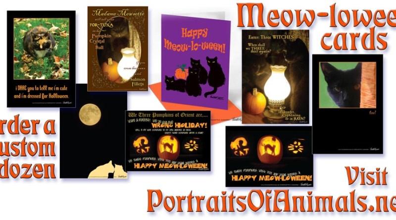 Halloween Cards!