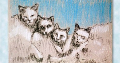 Marketplace: Catamount Brushmore, Just for Fun