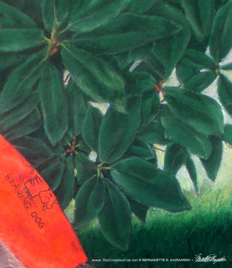 Detail of leaves and grass.