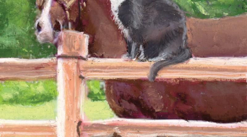 """""""The Corral Cat Caper"""" book cover"""