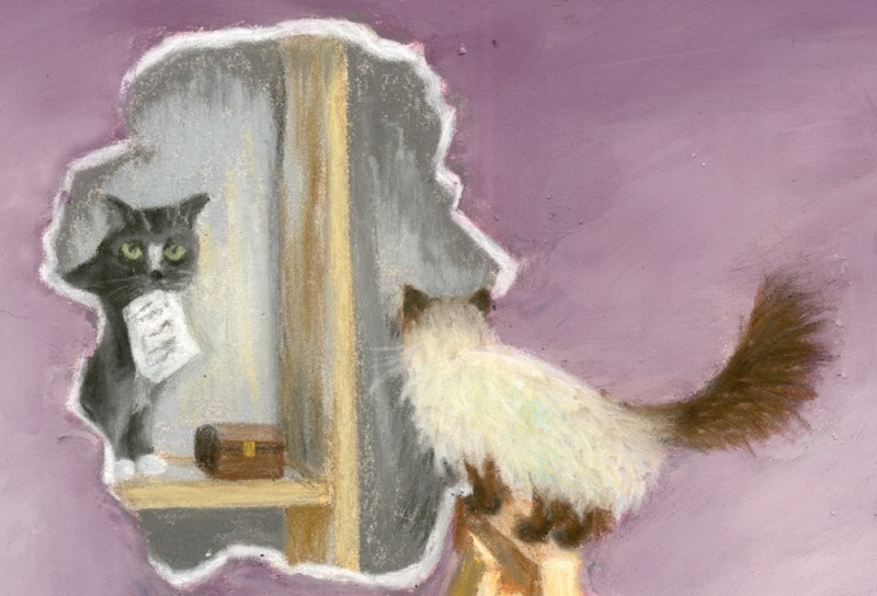 cover of patricia fry's sleight of paw