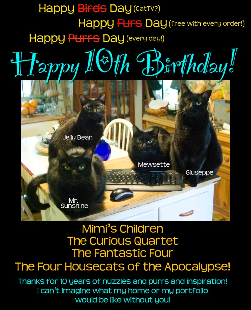 Happy 10th birthday to the four best cats in the whole world!