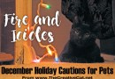 Fire and Ice-icles, Holiday Cautions for Pets