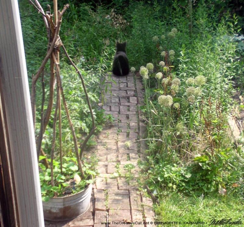 Seeing Mimi in the garden.