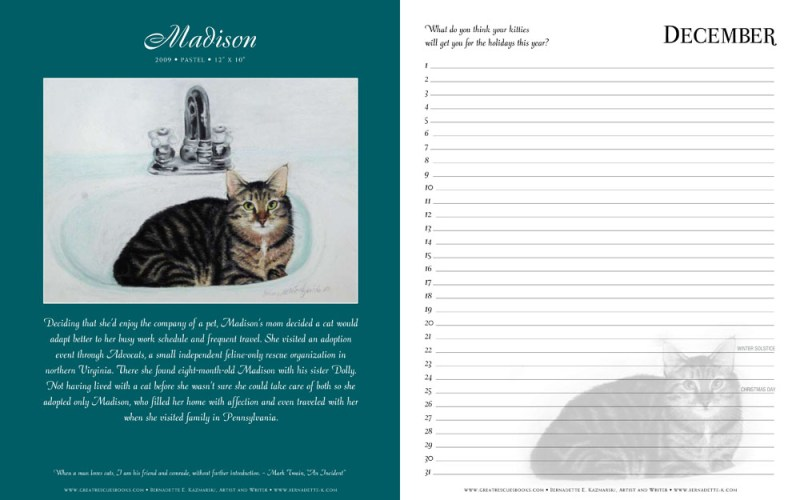 """Madison's page in """"Great Rescues Day Book"""""""