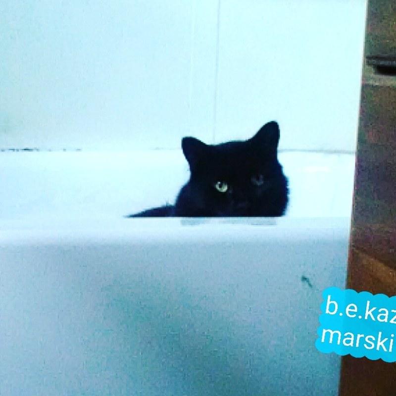 Hamlet in the tub.