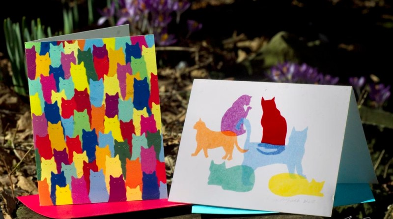 Inscrutable Patterns and Colorful Kitties note cards.