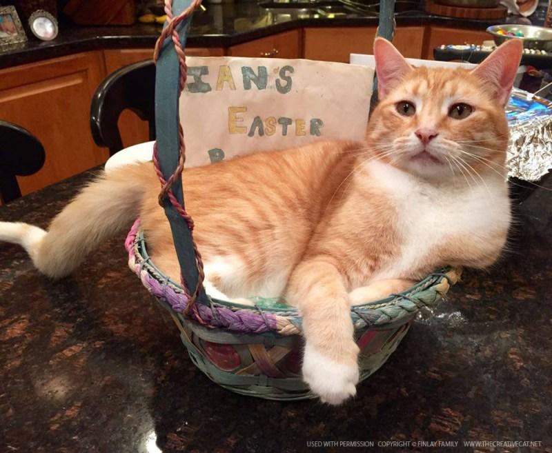 Ian's Easter basket.