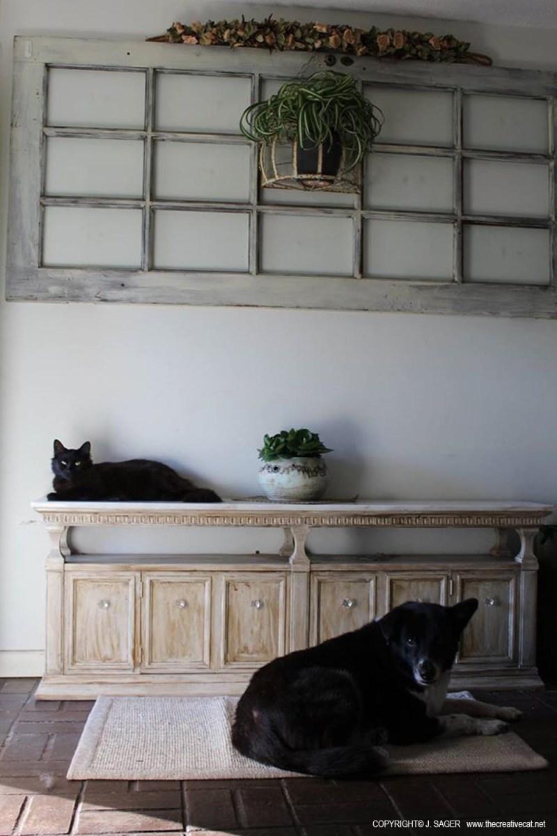 Simon and Bingo enjoy the new decorating.