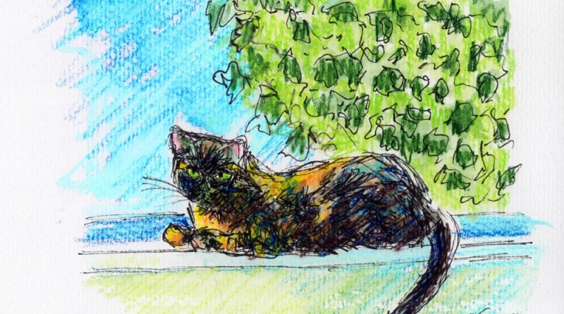 """Kelly on the Windowsill"", 5"" x 7"" ink and watercolor pencil © Bernadette E. Kazmarski"