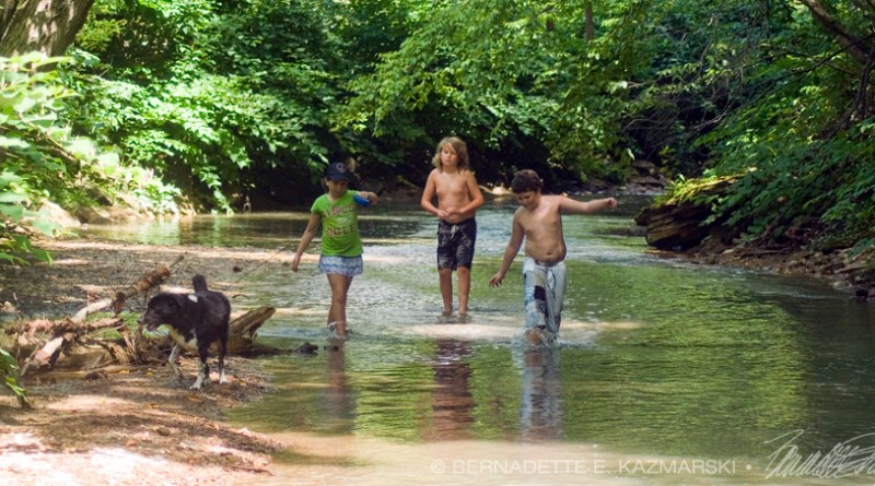 three kids in stream with dog