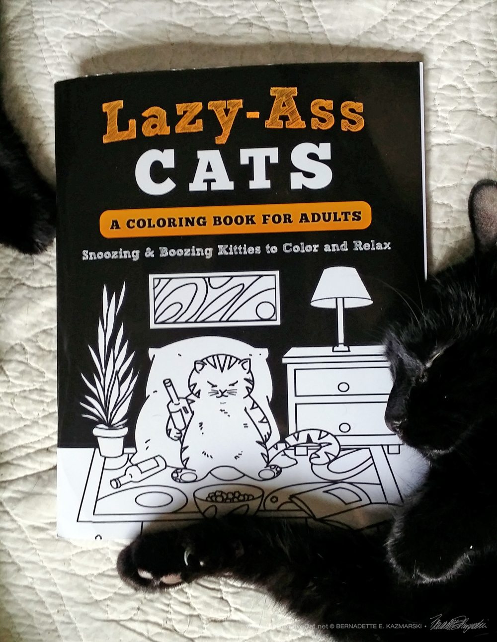 "Book Review: ""Lazy-Ass Cats, A Coloring Book for Adults"""