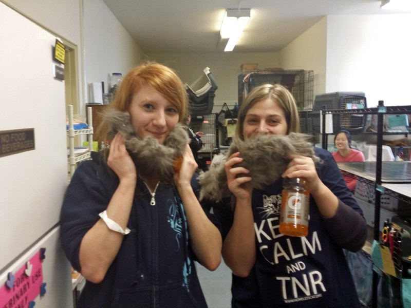 two women with cat fur