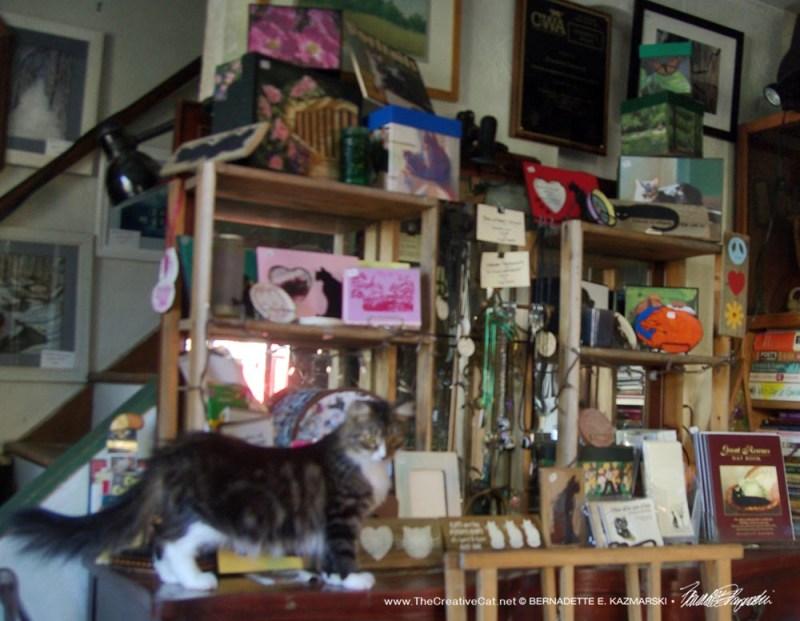 Mariposa models the shop.