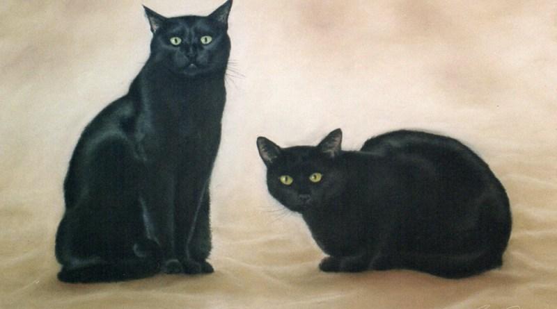 pastel portrait of two black cats