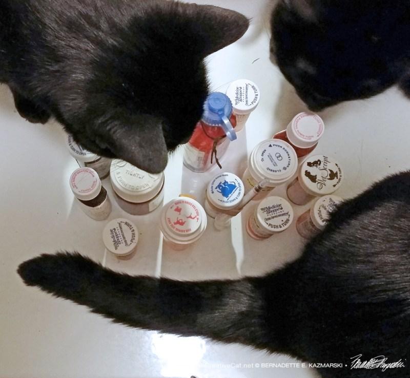 Medication Bottles.