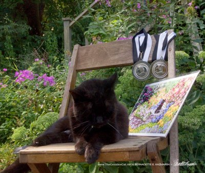 black cat with award
