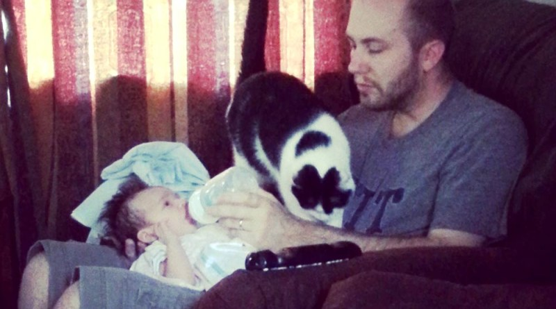 man feeding baby with cat