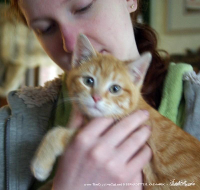 The orange kitten and Sara.
