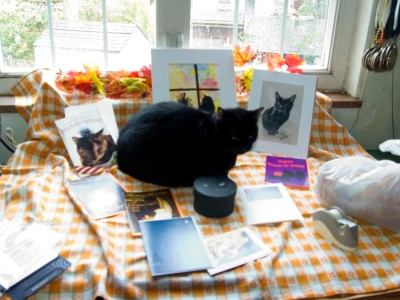 Sunshine was sure he was the center of attention as I began setting things up.