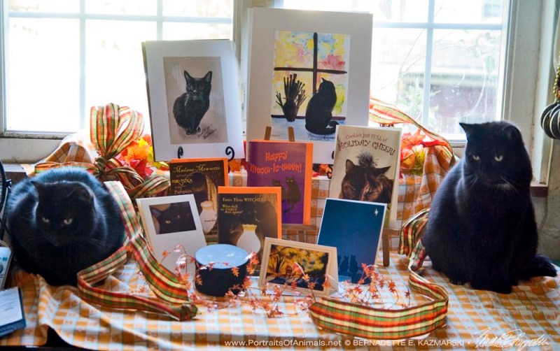 Mr. Sunshine and Jelly Bean present the October Feline Sampler Box.