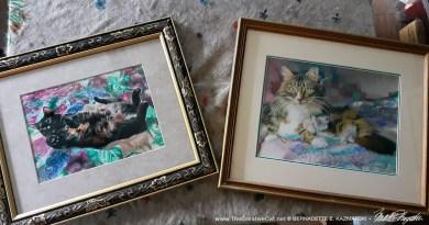 cat paintings