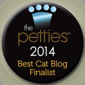 petties finalist