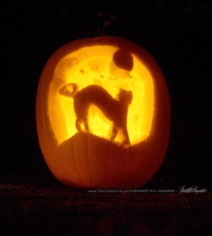 Cat and moon jack-o-lantern.