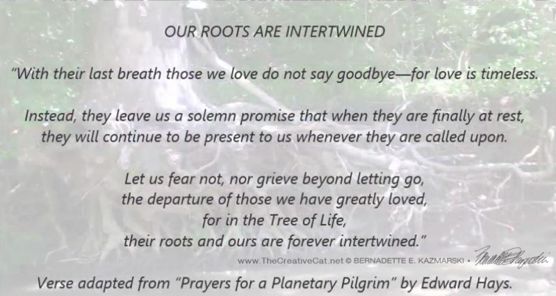 Our Roots are Intertwined