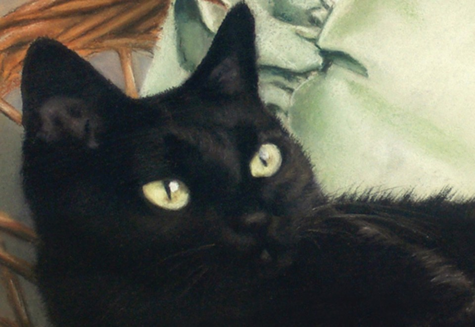 detail of portrait of black cat